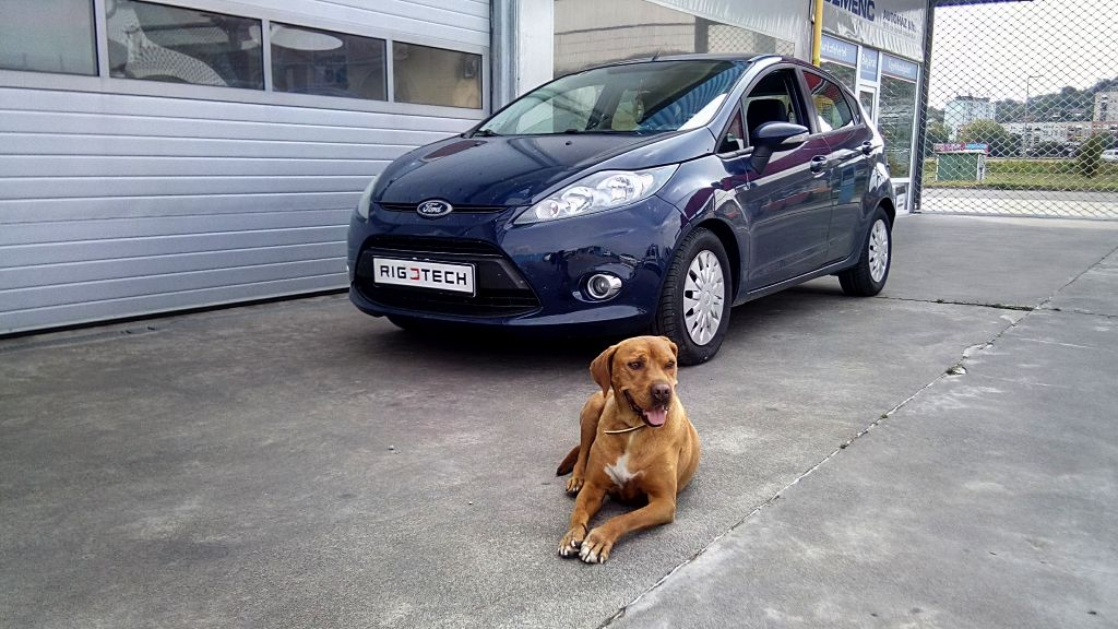 Ford-Fiesta-16TDCI-90ps-2012-chiptuning